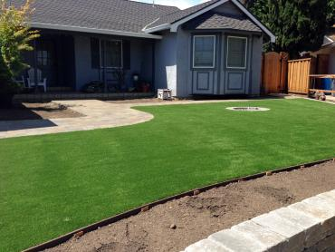Artificial Grass Photos: Synthetic Turf Hodgkins Illinois  Landscape  Commercial Landscape