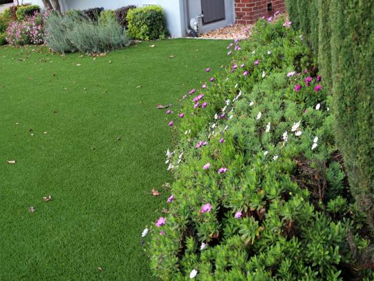 Synthetic Turf New Chicago Indiana Lawn  Front Yard artificial grass