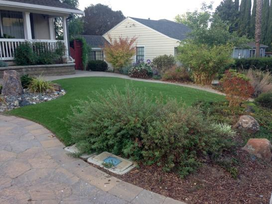 Artificial Grass Photos: Synthetic Turf Schaumburg Illinois  Landscape  Back Yard