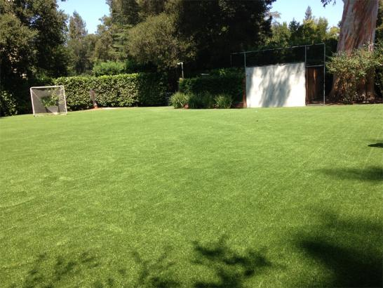 Artificial Grass Photos: Synthetic Turf Sports Glen Ellyn Illinois