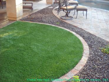 Artificial Grass Photos: Synthetic Veterinary Clinic Forest View Illinois for Dogs
