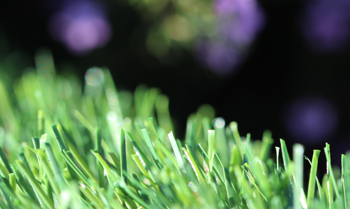 Artificial Grass Evergreen-54 Natural Artificial Grass Chicago Illinois